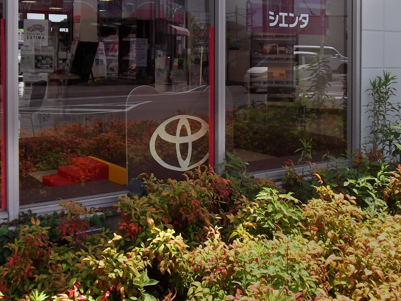 兵庫T高砂店After04.jpg